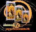 Lotus -  Puppy Dry Dog Food(Chicken) 幼犬低溫烘焙狗糧(雞肉配方) 12.5lb