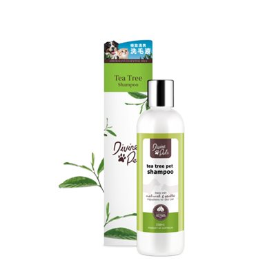 Divine Pets - Tea Tree Shampoo 極致清爽洗毛液 250ml