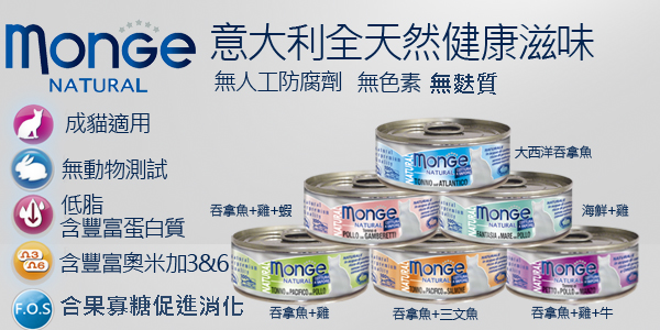 monge banner1