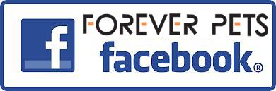 fb like1