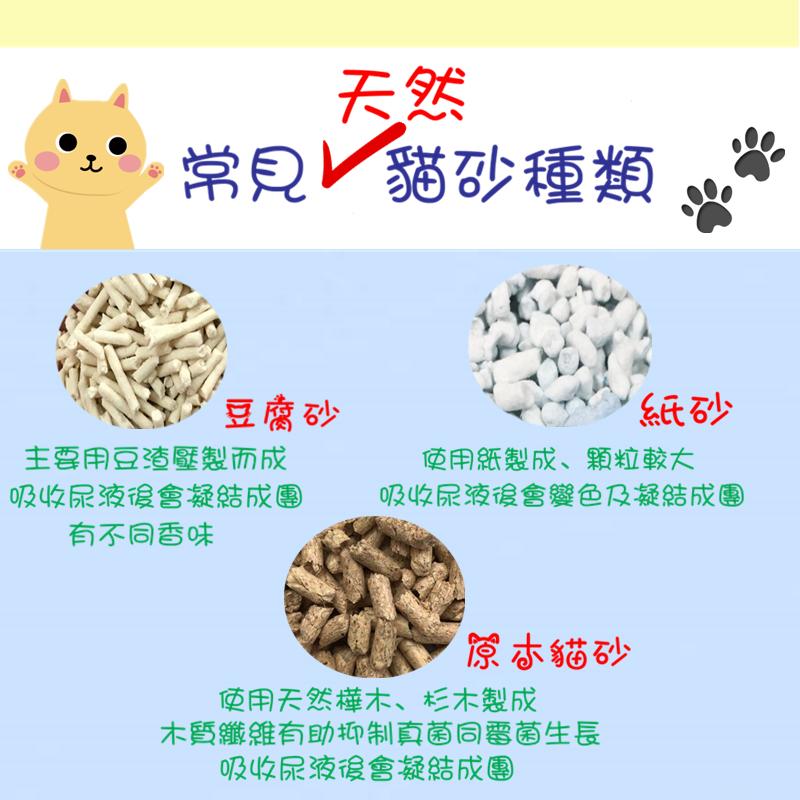 常見天然貓砂種類