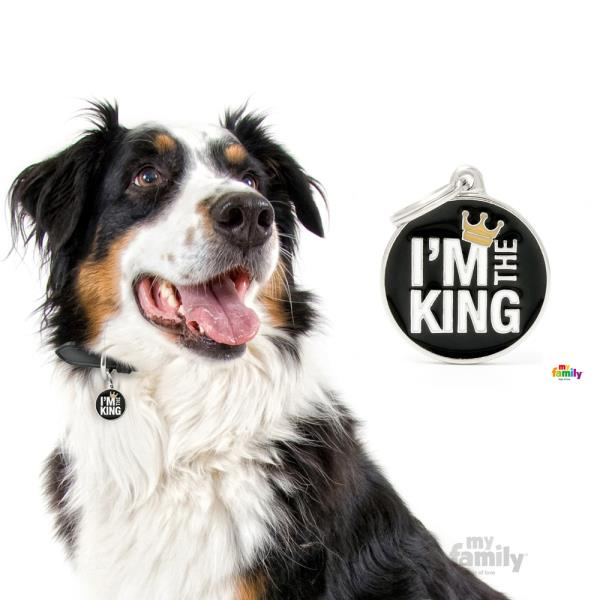 My Family - Charms I'm The King (CH17KING)