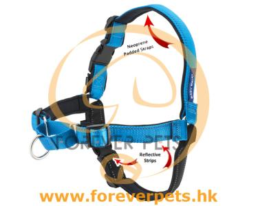 Deluxe Easy Walk Harness (海洋藍) L