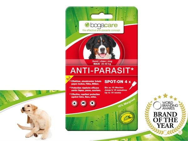 bogacare® ANTI-PARASIT Spot-on (LARGE) 天然驅蝨滴頸劑 (大型犬用) 25-50 kg
