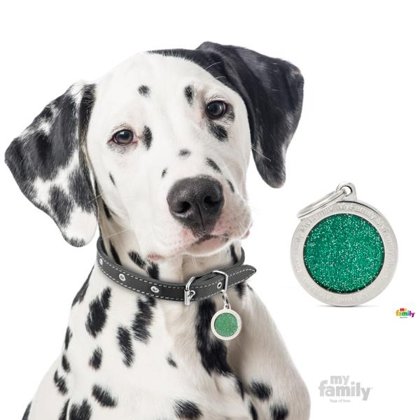 My Family - Shine & Reflective Big Circle Glitter Green (GL04BIGv)