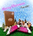 Pussy Deluxe 聖誕體驗套裝