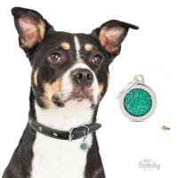 My Family - Shine & Reflective Small Circle Glitter Green (GL04SMALLV)