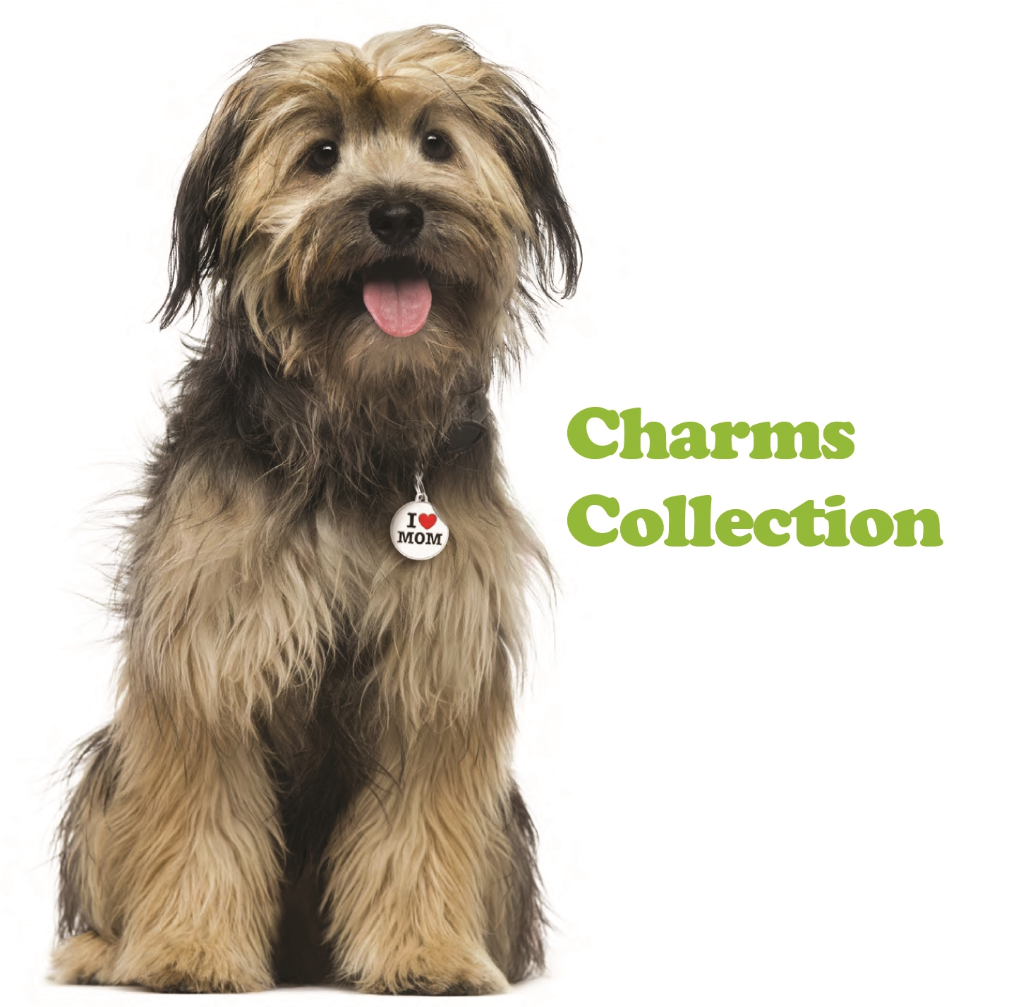 CHARMS collection