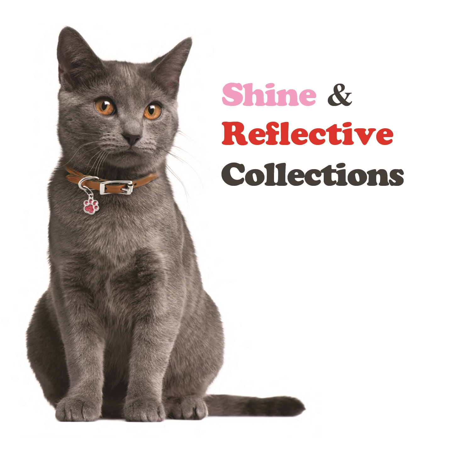 SHINE collection
